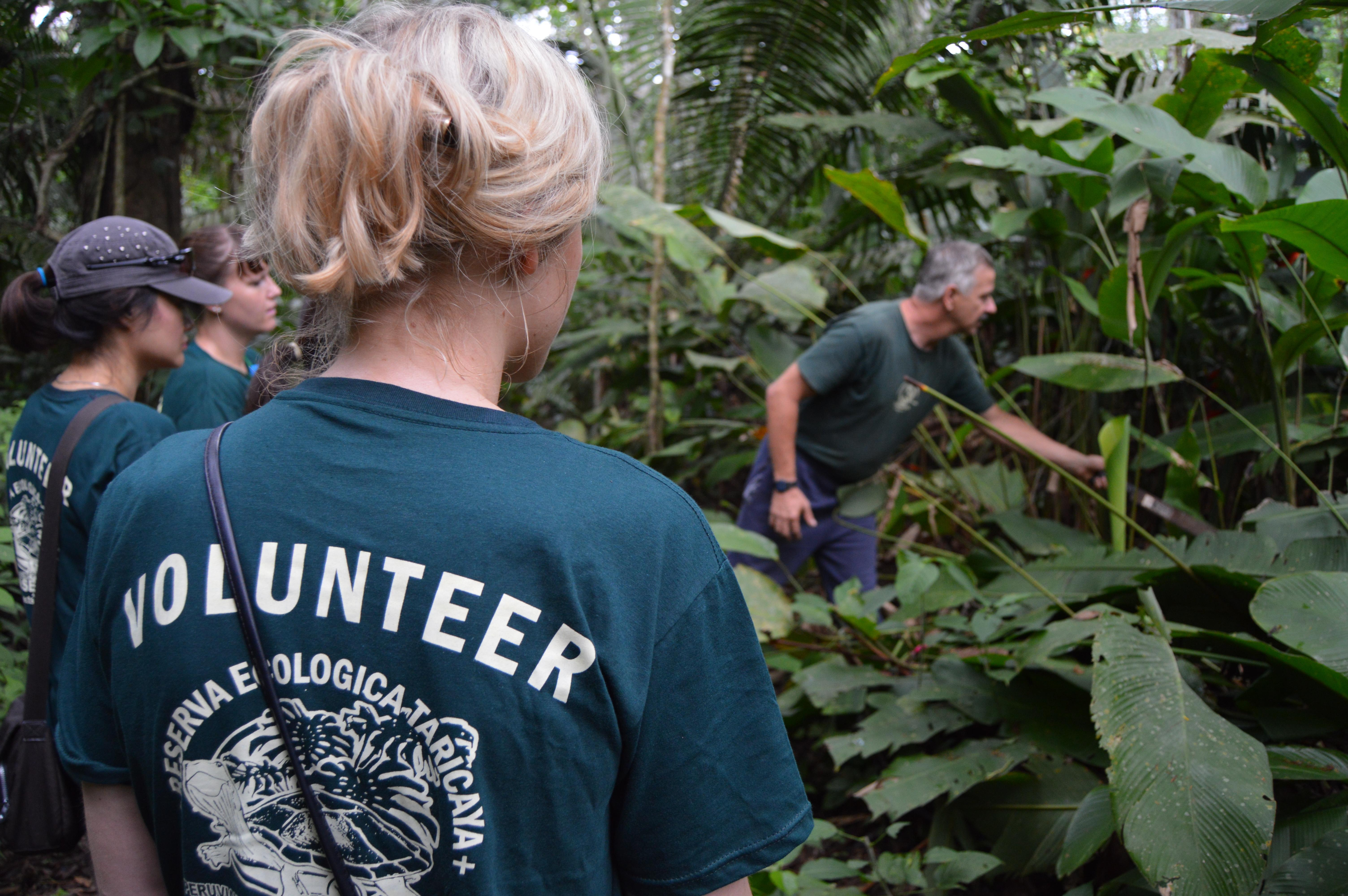 A Projects Abroad staff member explaining wildlife to volunteers in Peru